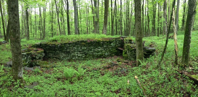 An old foundation along the Delaware Ridge Trail.
